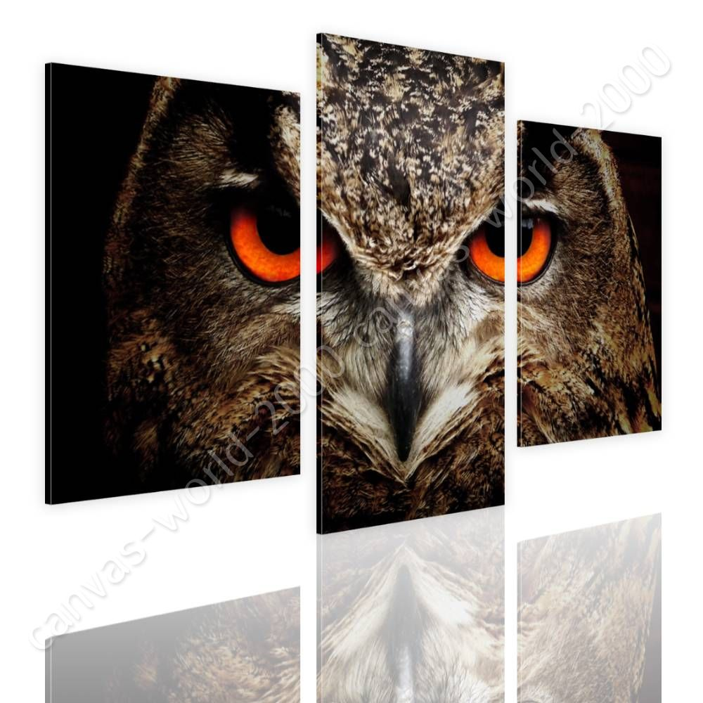 CANVAS (Rolled) Eagle Owl Eyes Split 3 Panels 3 Panels Canvas For Home Decor