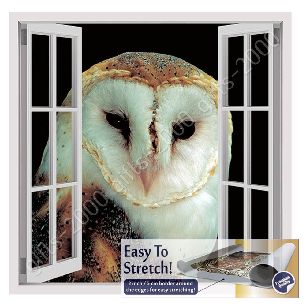 Night Owl by Fake 3D WindowCanvas Wall art oil painting picture Rolled