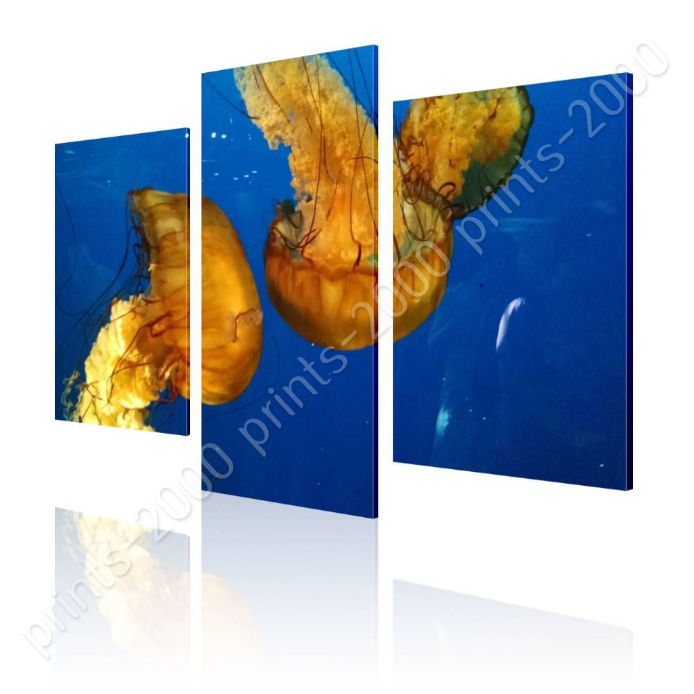 Aquarium Salle De Bain ~ poster or sticker decals vinyl jellyfish in aquarium split 3 panels