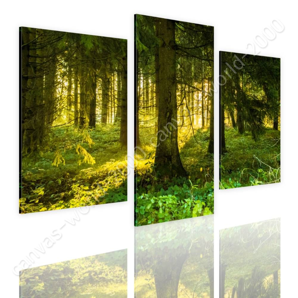 CANVAS (Rolled) Sun Light In Forest Split 3 Panels 3 Panels Oil ...