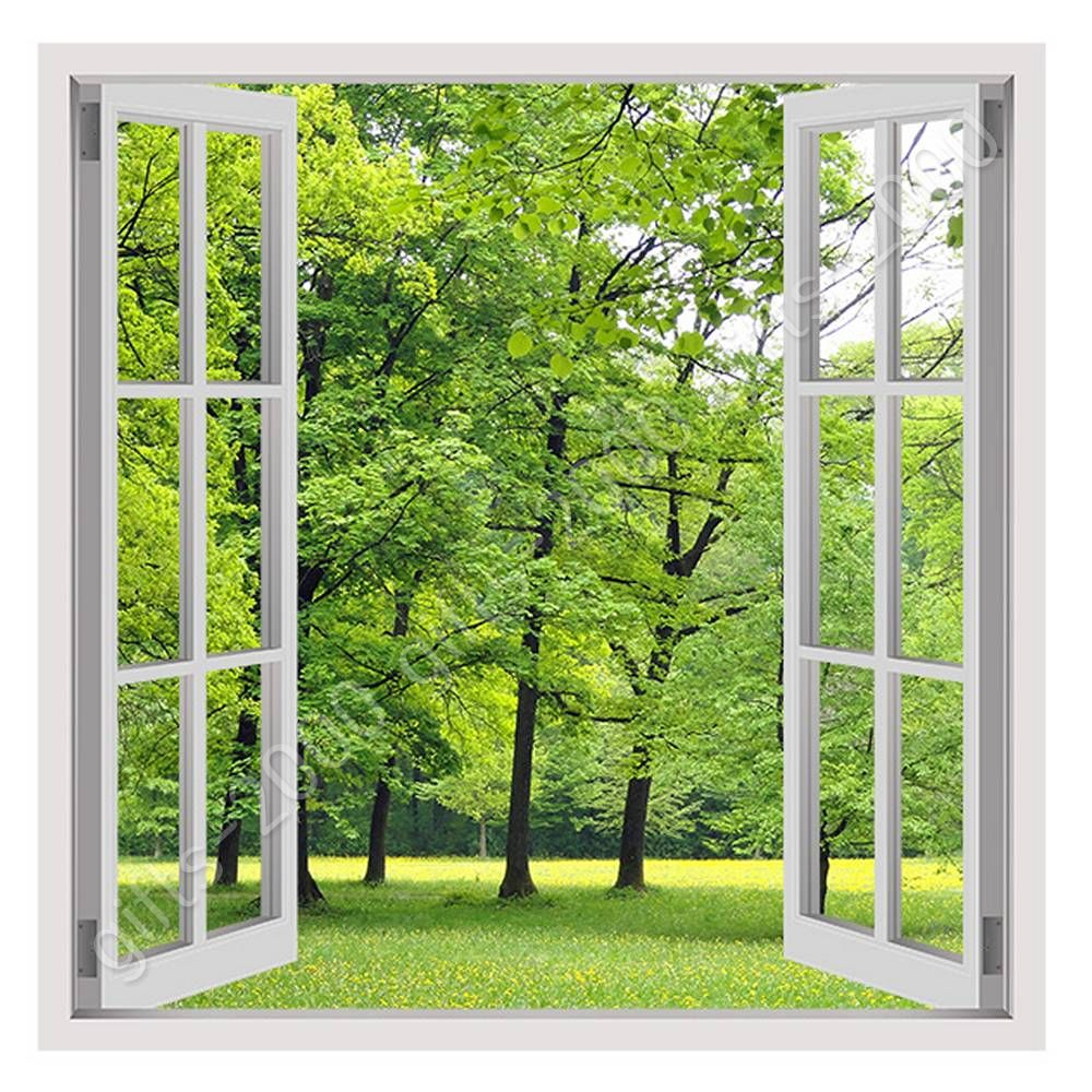 Relatively CANVAS (Rolled) Green Nature Fake 3D Window Art Oil Paint Canvas  HF24