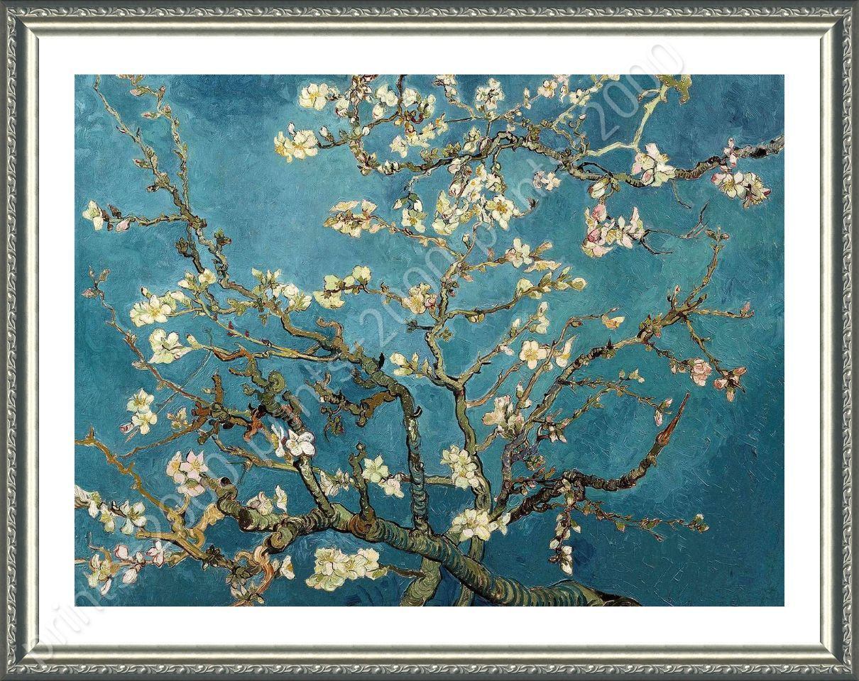 Almond Blossom By Vincent Van Gogh Framed Canvas Wall